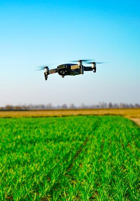 drone dans champ vert